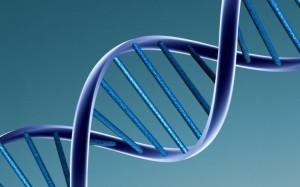 alpha-1 antitrypsin deficiency treatment, alpha-1 antitrypsin deficiency symptoms